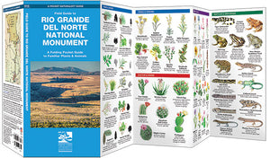 Field Guide to Rio Grande del Norte National Monument