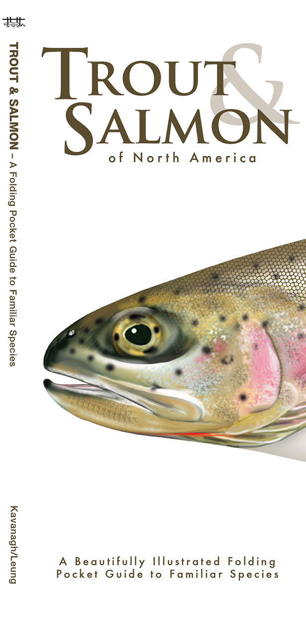 Pocket Naturalist: Trout & Salmon of North America