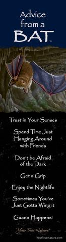 Bookmark: Advice From a Bat