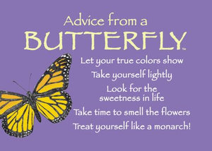 Magnet: Advice From Butterfly