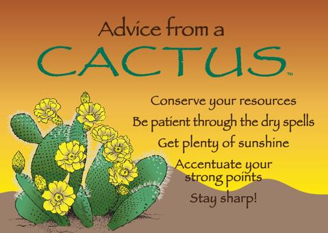 Magnet: Advice From Cactus