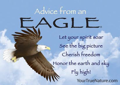 Magnet: Advice From Eagle