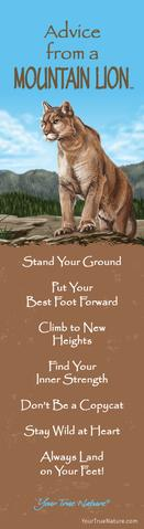 Bookmark: Advice From a Mountain Lion