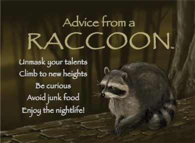 Magnet: Advice From Raccoon