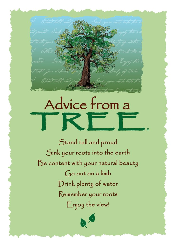 Greeting Card: Advice From A Tree