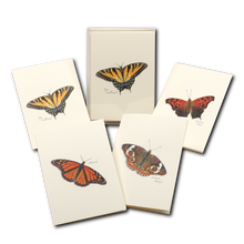 Load image into Gallery viewer, Notecard: Butterfly Assortment