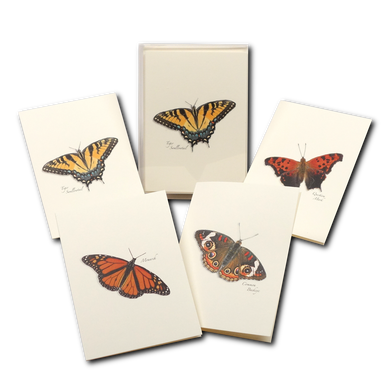 Boxed Notecards: Butterfly Assortment
