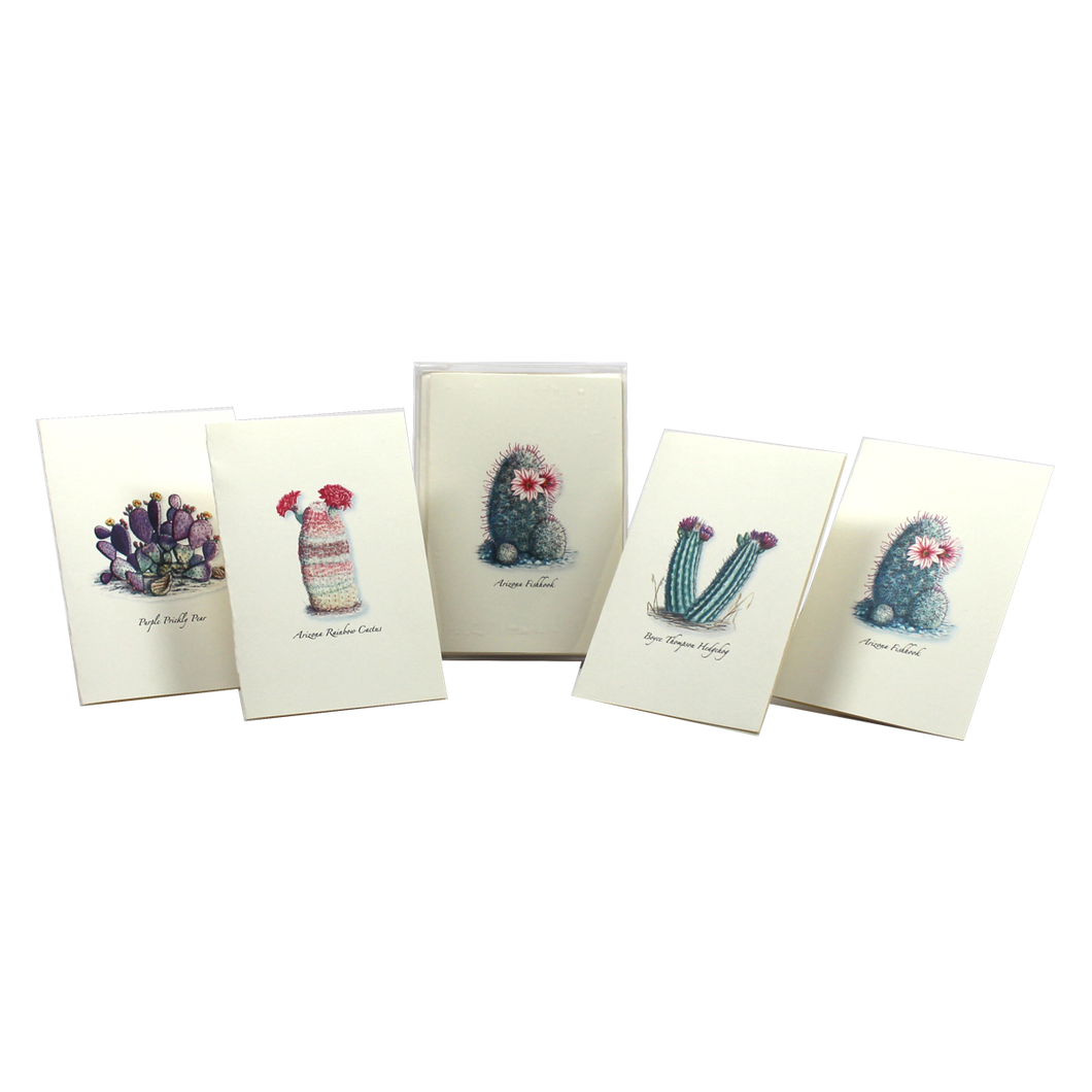 Boxed Notecards: Cacti Assortment I