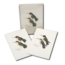 Load image into Gallery viewer, Boxed Notecards: Peterson Hummingbirds
