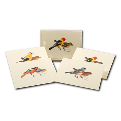 Boxed Notecards: Western Birds
