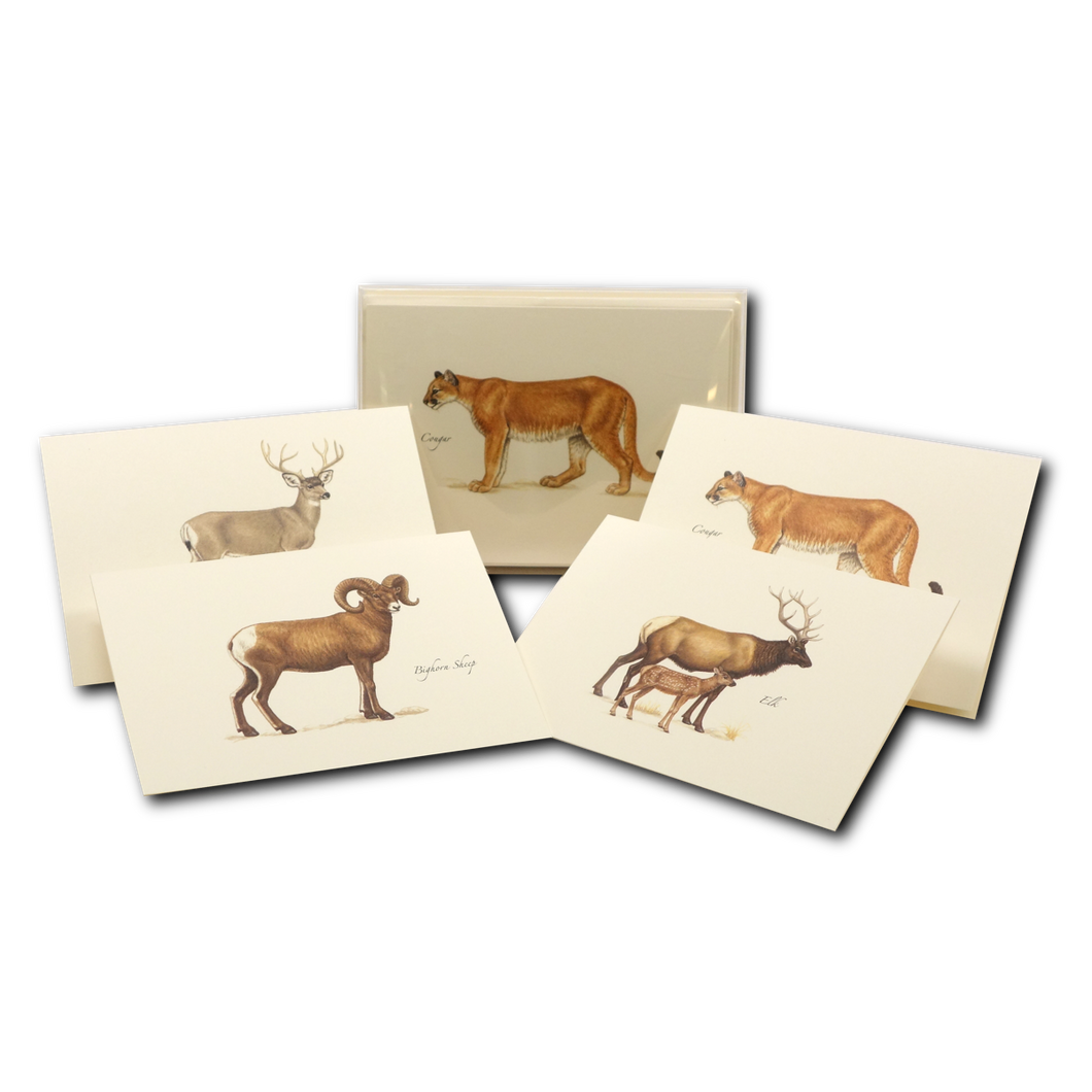 Boxed Notecards: Western Mammals