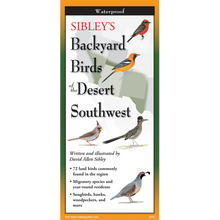 Load image into Gallery viewer, Pocket Guide: Sibley's Backyard Birds of the Desert Southwest