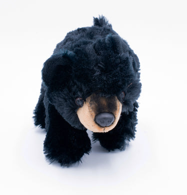 Plush: Black Bear Cub 10