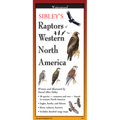 Pocket Guide: Sibley's Raptors of Western North America