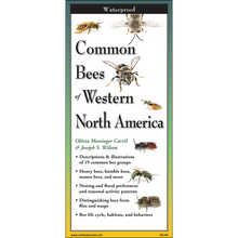 Load image into Gallery viewer, Pocket Guide: Common Bees of Western North America