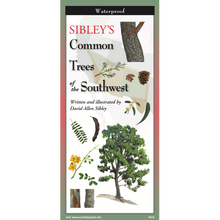 Load image into Gallery viewer, Pocket Guide: Sibley's Common Trees of the Southwest