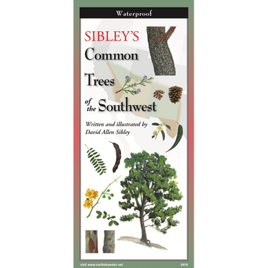 Pocket Guide: Sibley's Common Trees of the Southwest