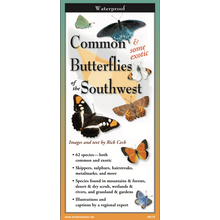 Load image into Gallery viewer, Pocket Guide: Common & Some Exotic Butterflies of the Southwest