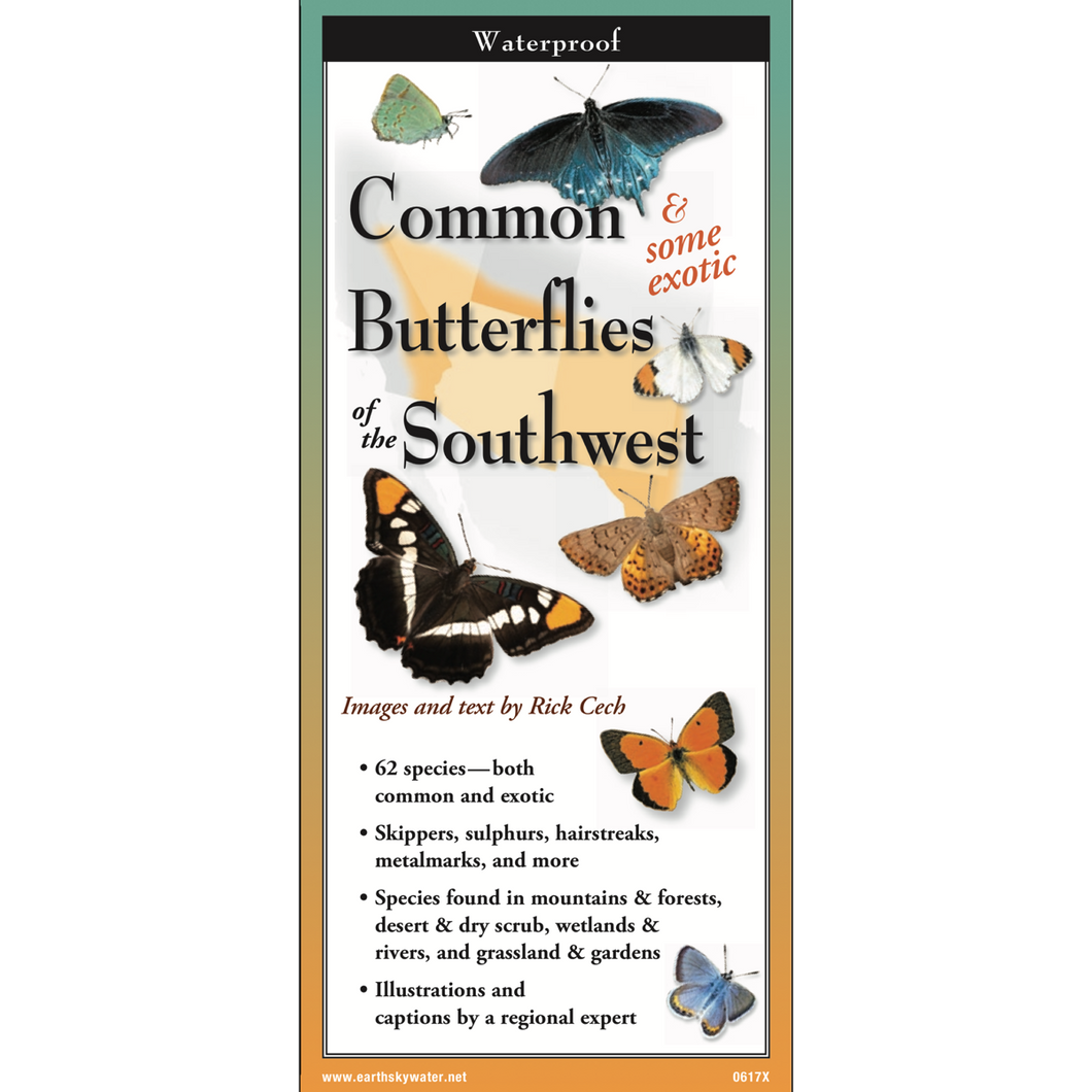 Pocket Guide: Common & Some Exotic Butterflies of the Southwest