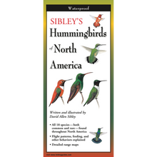 Load image into Gallery viewer, Pocket Guide: Sibley's Hummingbirds of North America