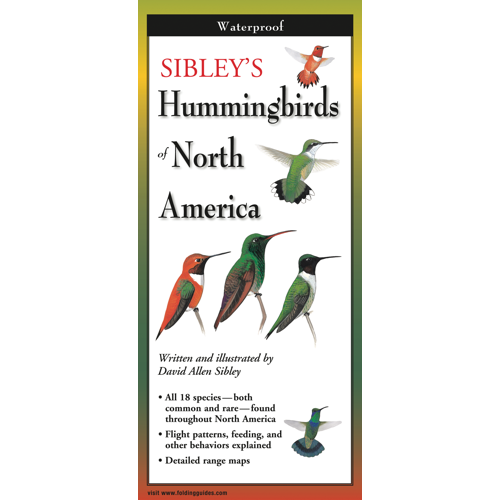 Pocket Guide: Sibley's Hummingbirds of North America