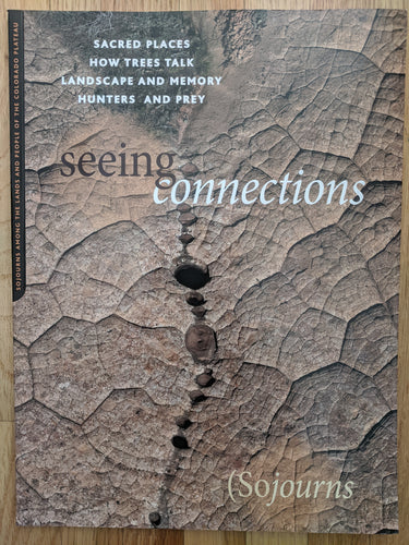 Sojourns Seeing Connections