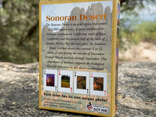 Load image into Gallery viewer, Playing Cards: Sonoran Desert