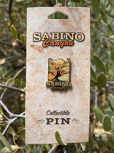 Pin: Sabino Canyon