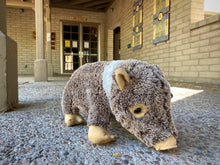 Load image into Gallery viewer, Plush: Javelina 16""