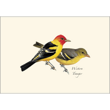 Load image into Gallery viewer, Notecard: Western Birds