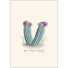 Load image into Gallery viewer, Boxed Notecards: Cacti Assortment I