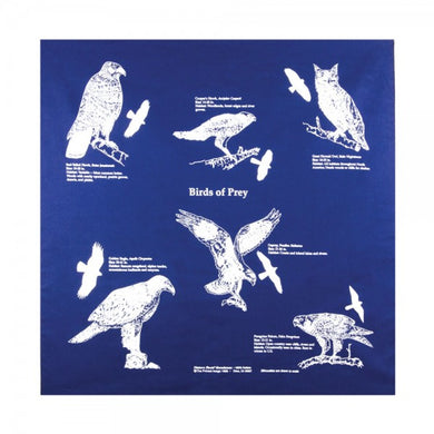 Bandana: Birds of Prey