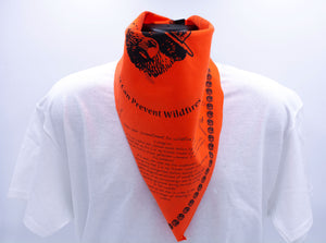 Bandana: Smokey Wildfire Prevention