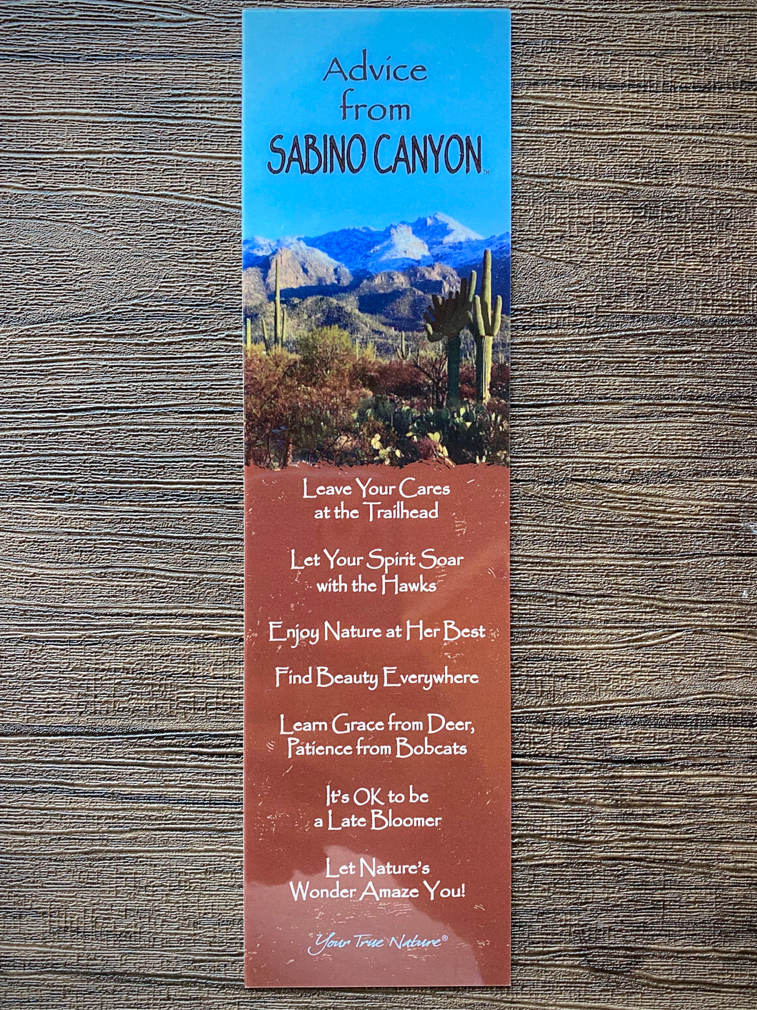 Bookmark: Advice From Sabino Canyon