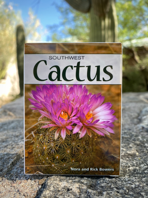 Playing Cards: Southwest Cactus
