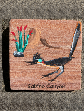 Coaster: Roadrunner (Sabino Canyon)