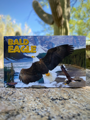 Flipbook: Bald Eagle