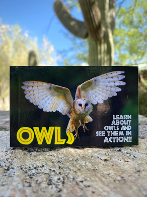 Flipbook: Owls