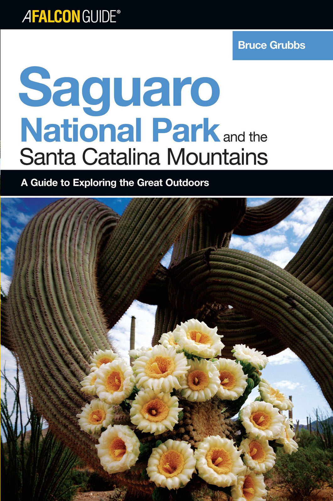 Saguaro National Park and the Santa Catalina Mountains: A Guide to Exploring the Great Outdoors