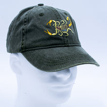 Load image into Gallery viewer, Hat: Scorpion