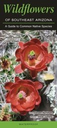 Pocket Guide: Wildflowers of Southeast Arizona