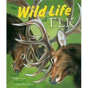The Wild Life of Elk