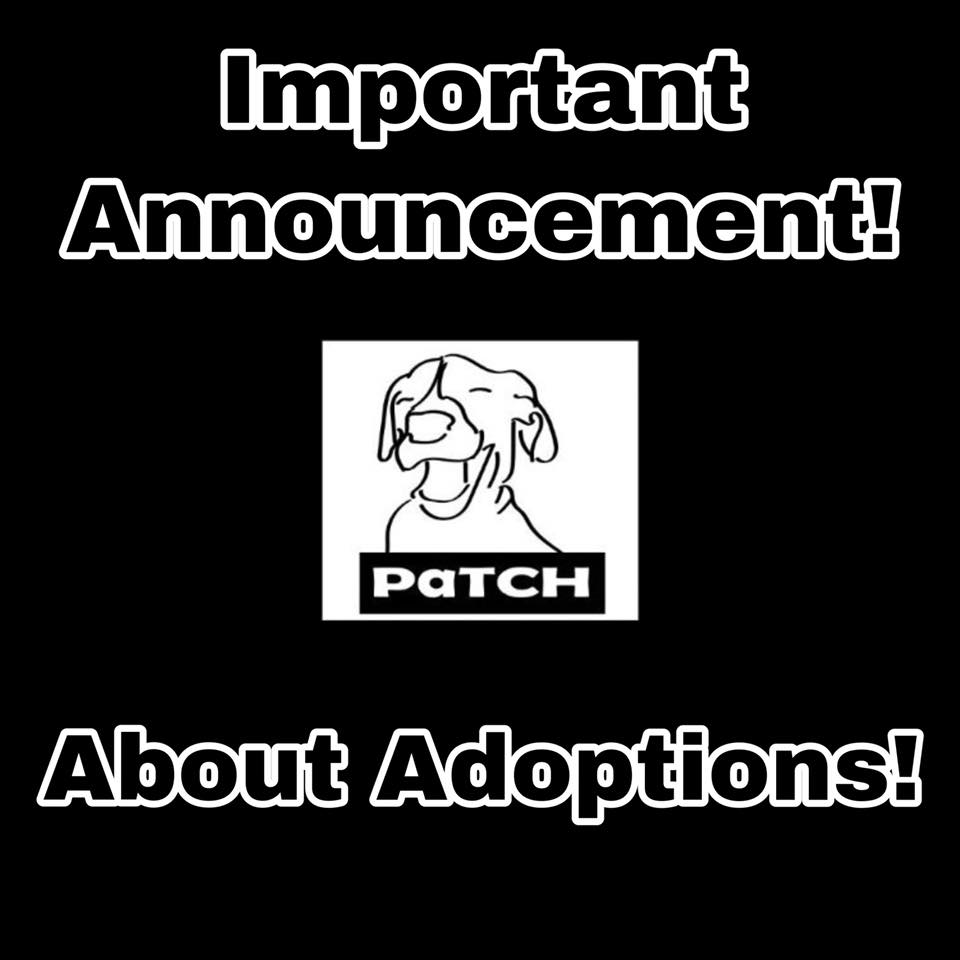 Important Adoption Announcement!!