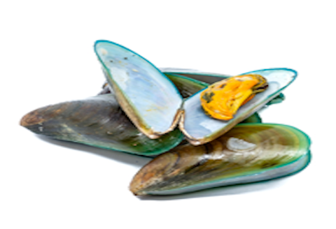 New Zealand Green Lipped Mussel helps reduce joint pain and inflammation in joints