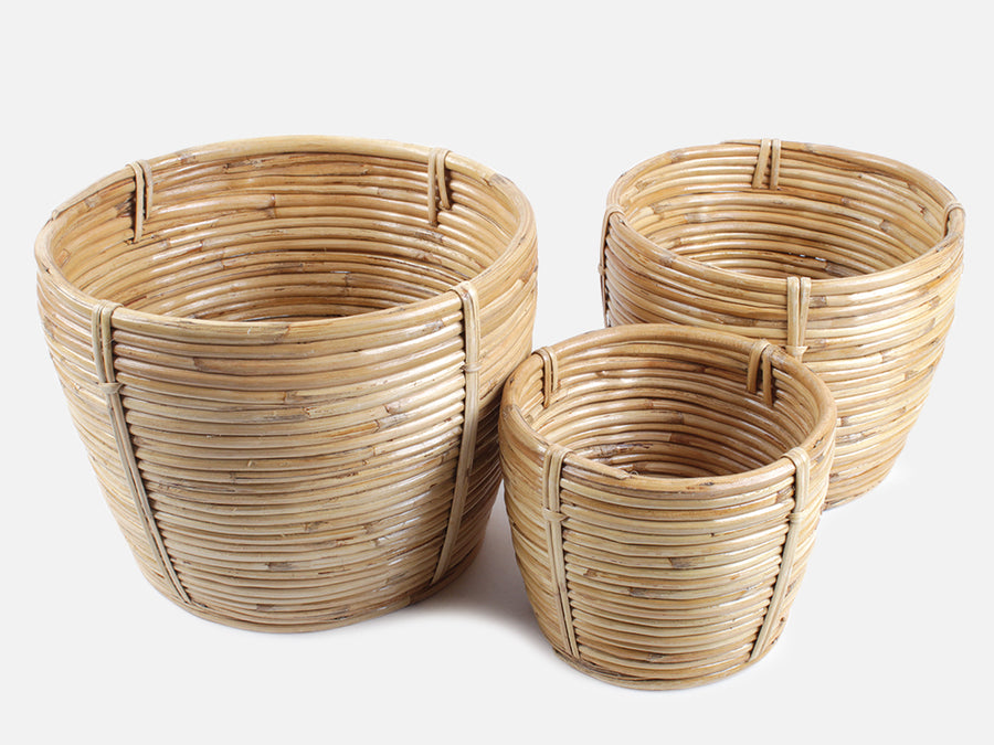 Bamboo Pot // Three Sizes