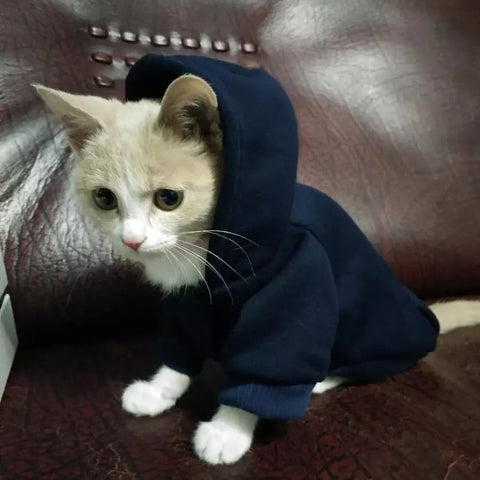 Sweat A Capuche Pour Chat - Felix-le-chat