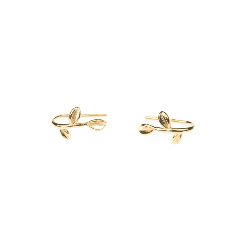 Beautiful Modern Leaf Design Solid Gold Earrings By Jewelry Lane