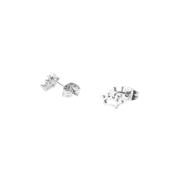 Beautiful Charming Princess Crown Solid White Gold Stud Earrings By Jewelry Lane