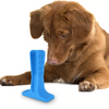 [On Sale] DOG TOOTHBRUSH - HELPS PREVENT DOG GUM DISEASE - goodwearing