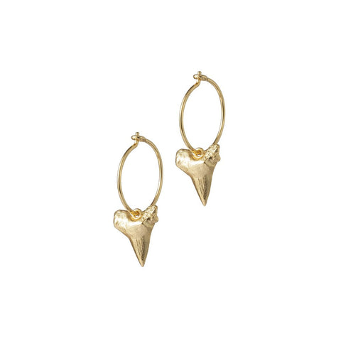 Bite Me Hoops (pair), Gold